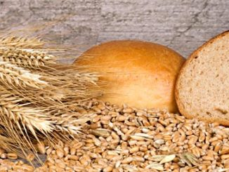Harvard Study: longevity tips is eating grains