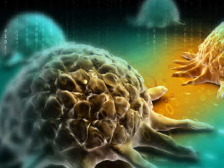 Self-assembled carbohydrate molecules trap cancer cells