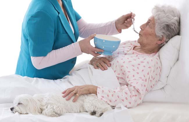Nutrition diet for long-term bedridden patients