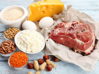 Medical science - Should kidney disease patients eat animal protein or plant protein?